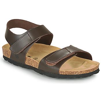 kengät Pojat Sandaalit ja avokkaat Citrouille et Compagnie BELLI JOE Brown
