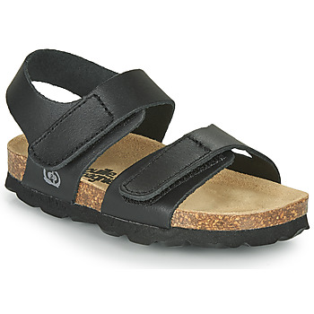 kengät Pojat Sandaalit ja avokkaat Citrouille et Compagnie BELLI JOE Musta