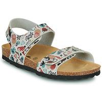 kengät Lapset Sandaalit ja avokkaat Citrouille et Compagnie BELLI JOE Beige