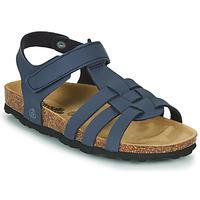 kengät Pojat Sandaalit ja avokkaat Citrouille et Compagnie JANISOL Blue