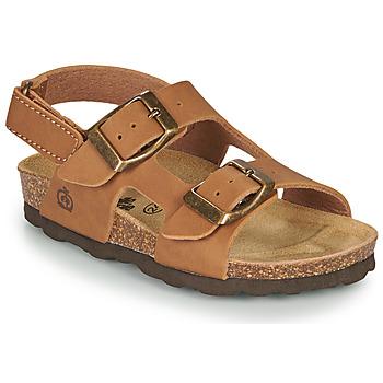 kengät Pojat Sandaalit ja avokkaat Citrouille et Compagnie KELATU Brown