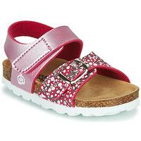 kengät Tytöt Sandaalit ja avokkaat Citrouille et Compagnie MIRTINO Pink