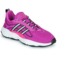 kengät Matalavartiset tennarit adidas Originals HAIWEE W Violetti