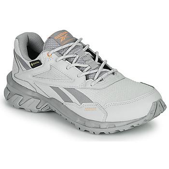 kengät Matalavartiset tennarit Reebok Classic RIDGERIDER 5 GTX Grey