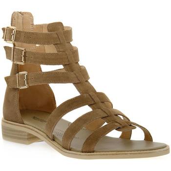 kengät Naiset Sandaalit ja avokkaat NeroGiardini NERO GIARDINI  405 VELOUR CASTORO Beige