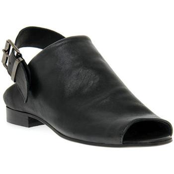 kengät Naiset Sandaalit ja avokkaat Priv Lab RENATA NERO Nero