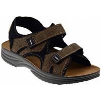 kengät Miehet Sandaalit ja avokkaat Inblu  Monivärinen