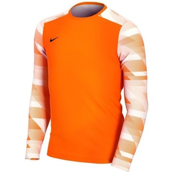 vaatteet Pojat T-paidat pitkillä hihoilla Nike JR Dry Park IV Oranssin väriset
