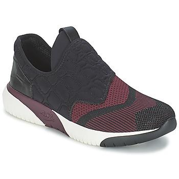 kengät Naiset Matalavartiset tennarit Ash SODA Bordeaux