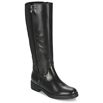 kengät Naiset Saappaat Tosca Blu ABELLINUM Black