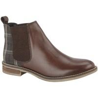kengät Naiset Nilkkurit Cipriata  Dark Brown