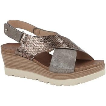 kengät Naiset Sandaalit ja avokkaat Cipriata  Pewter/Bronze
