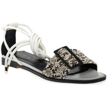 kengät Naiset Sandaalit ja avokkaat Vienty JIMENA Grigio