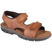 kengät Miehet Sandaalit ja avokkaat Roamers  Tan