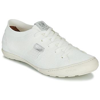 kengät Naiset Matalavartiset tennarit PLDM by Palladium GLORIEUSE White