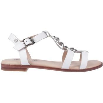 kengät Naiset Sandaalit ja avokkaat Hush puppies  White
