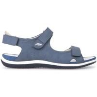 kengät Naiset Sandaalit ja avokkaat Geox D Sand Vega A Vaaleansiniset