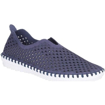 kengät Naiset Espadrillot Divaz  Navy
