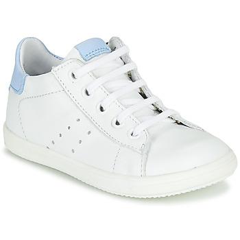 kengät Pojat Matalavartiset tennarit Little Mary DUSTIN *SAUVAGE IVOIRE+CIEL