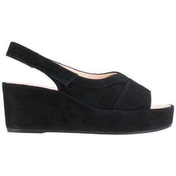 kengät Naiset Sandaalit ja avokkaat Högl Pappilon Schwarz Sandals Musta