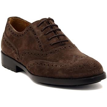 kengät Miehet Derby-kengät Marco Ferretti NEWPORT BROWN Multicolore