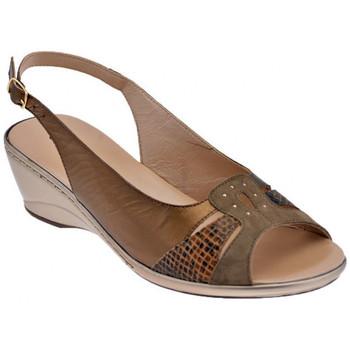 kengät Naiset Sandaalit ja avokkaat Confort  Ruskea