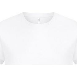 vaatteet Miehet Lyhythihainen t-paita Casual Classics  White