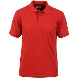 vaatteet Miehet Lyhythihainen poolopaita Absolute Apparel  Red