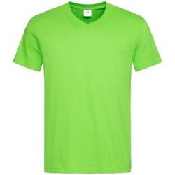 vaatteet Miehet Lyhythihainen t-paita Stedman  Kiwi Green