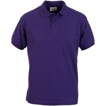 vaatteet Miehet Lyhythihainen poolopaita Absolute Apparel  Purple