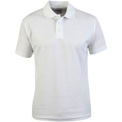 vaatteet Miehet Lyhythihainen poolopaita Absolute Apparel  White