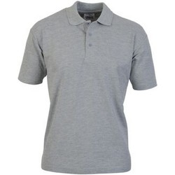 vaatteet Miehet Lyhythihainen poolopaita Casual Classics  Sport Grey