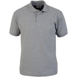 vaatteet Miehet Lyhythihainen poolopaita Absolute Apparel  Sport Grey