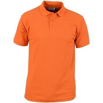 vaatteet Miehet Lyhythihainen poolopaita Absolute Apparel  Orange