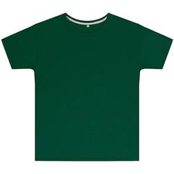 vaatteet Lapset Lyhythihainen t-paita Sg SGTEEK Bottle Green