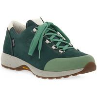 kengät Naiset Vaelluskengät Lomer BALI MTX PINE Verde