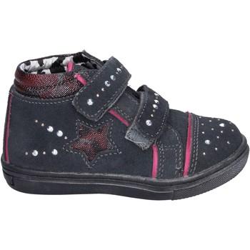 kengät Tytöt Korkeavartiset tennarit Didiblu sneakers camoscio strass Grigio