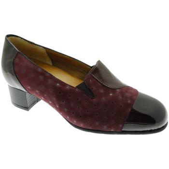kengät Naiset Korkokengät Soffice Sogno SOSO20512bor grigio