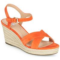 kengät Naiset Sandaalit ja avokkaat Geox D SOLEIL Oranssi