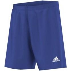 vaatteet Miehet Shortsit / Bermuda-shortsit adidas Originals Parma 16 Junior Vaaleansiniset