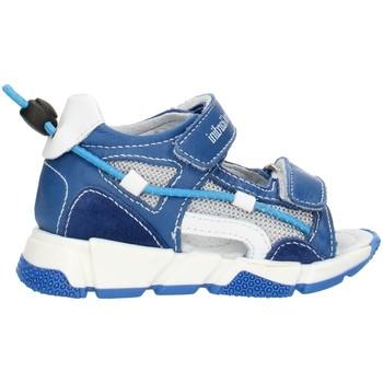kengät Tytöt Sandaalit ja avokkaat NeroGiardini E023881M Blue
