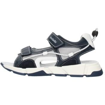 kengät Pojat Sandaalit ja avokkaat NeroGiardini E033851M Blue