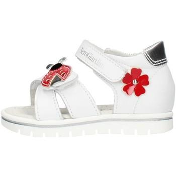 kengät Tytöt Saappaat Nero Giardini E021470F White