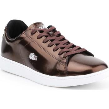 kengät Naiset Matalavartiset tennarit Lacoste Carnaby Evo 7-30SPW4110DB2 brown