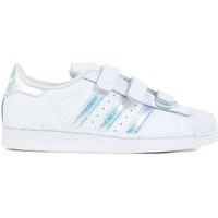 kengät Lapset Matalavartiset tennarit adidas Originals Superstar CF C Valkoiset