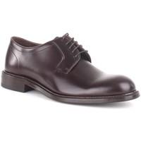 kengät Miehet Derby-kengät John Spencer 11239 5610 Brown