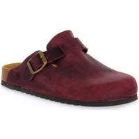 kengät Puukengät Bioline 1900 VINO INGRASSATO Rosso