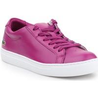kengät Naiset Matalavartiset tennarit Lacoste L.12.12 117 7-33CAW1000R56 purple