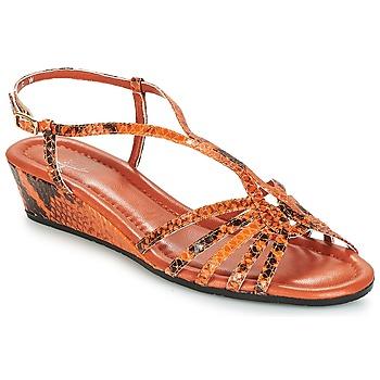 kengät Naiset Sandaalit ja avokkaat Amalfi by Rangoni NAMIBIAPRT Orange