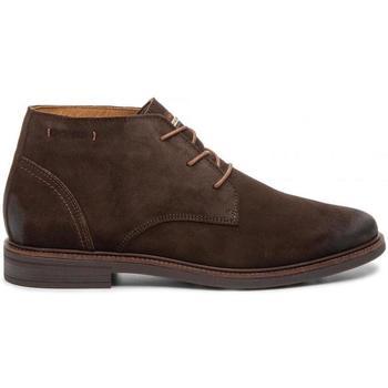 kengät Miehet Bootsit Salamander Sarato Brown Ruskea